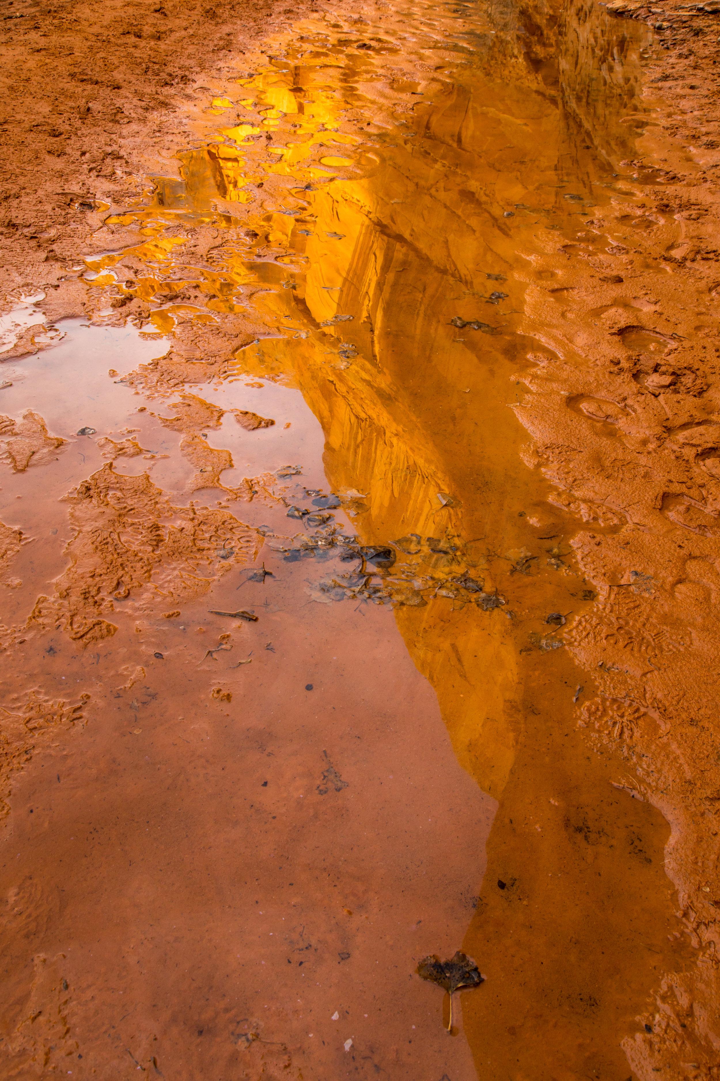 Horseshoe Canyon, Image # 7920