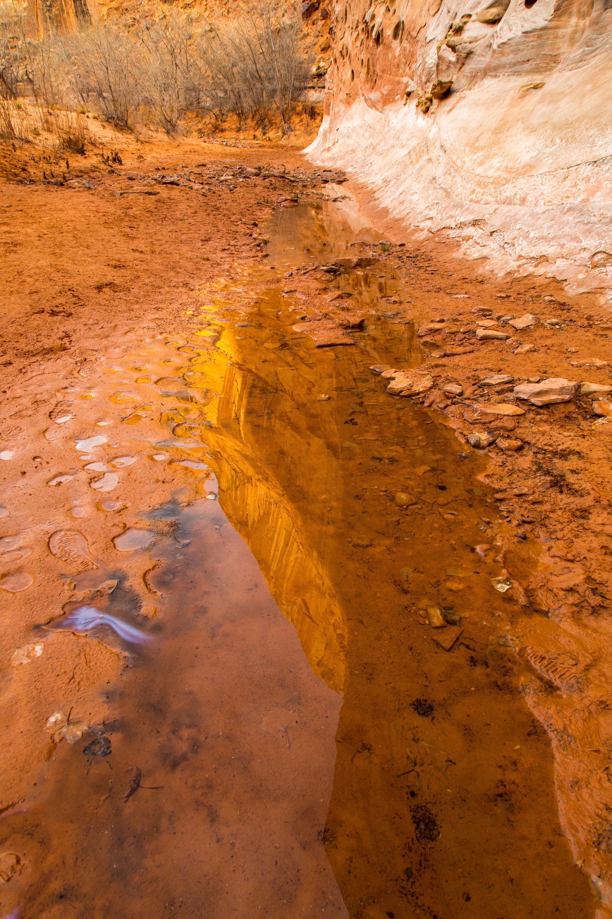 Horseshoe Canyon, Image # 7933