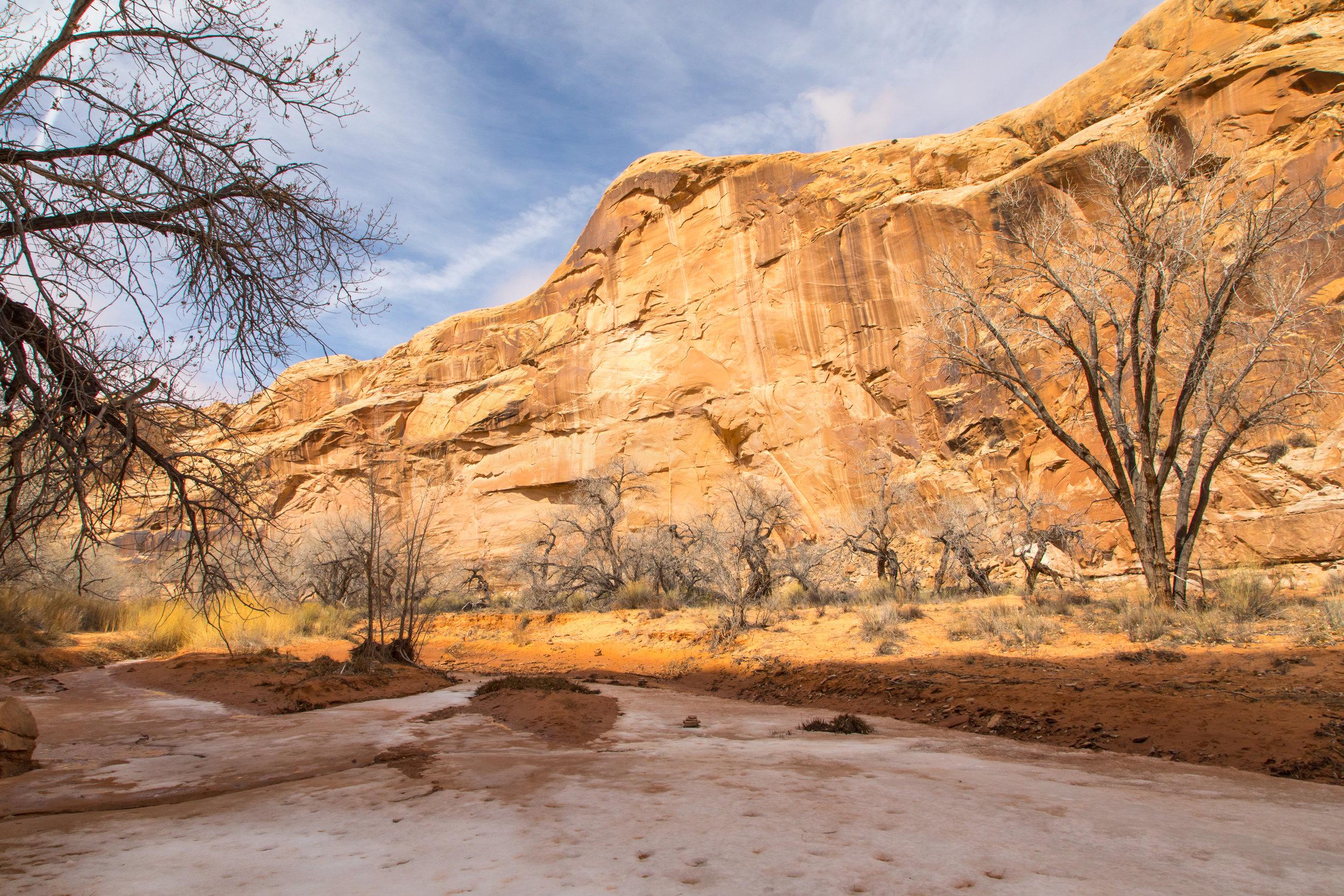 Horseshoe Canyon, Image # 9165