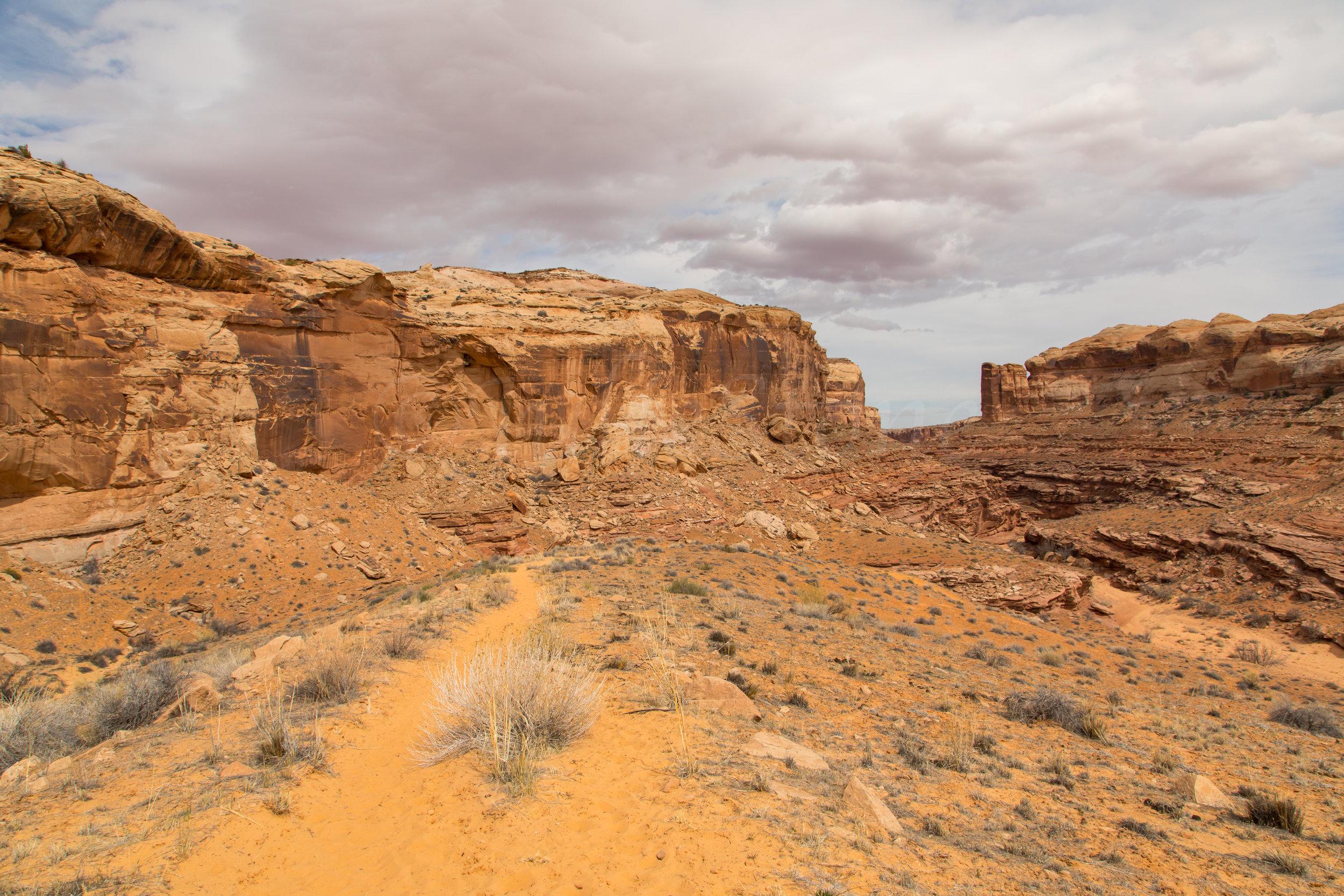 Horseshoe Canyon, Image # 9227