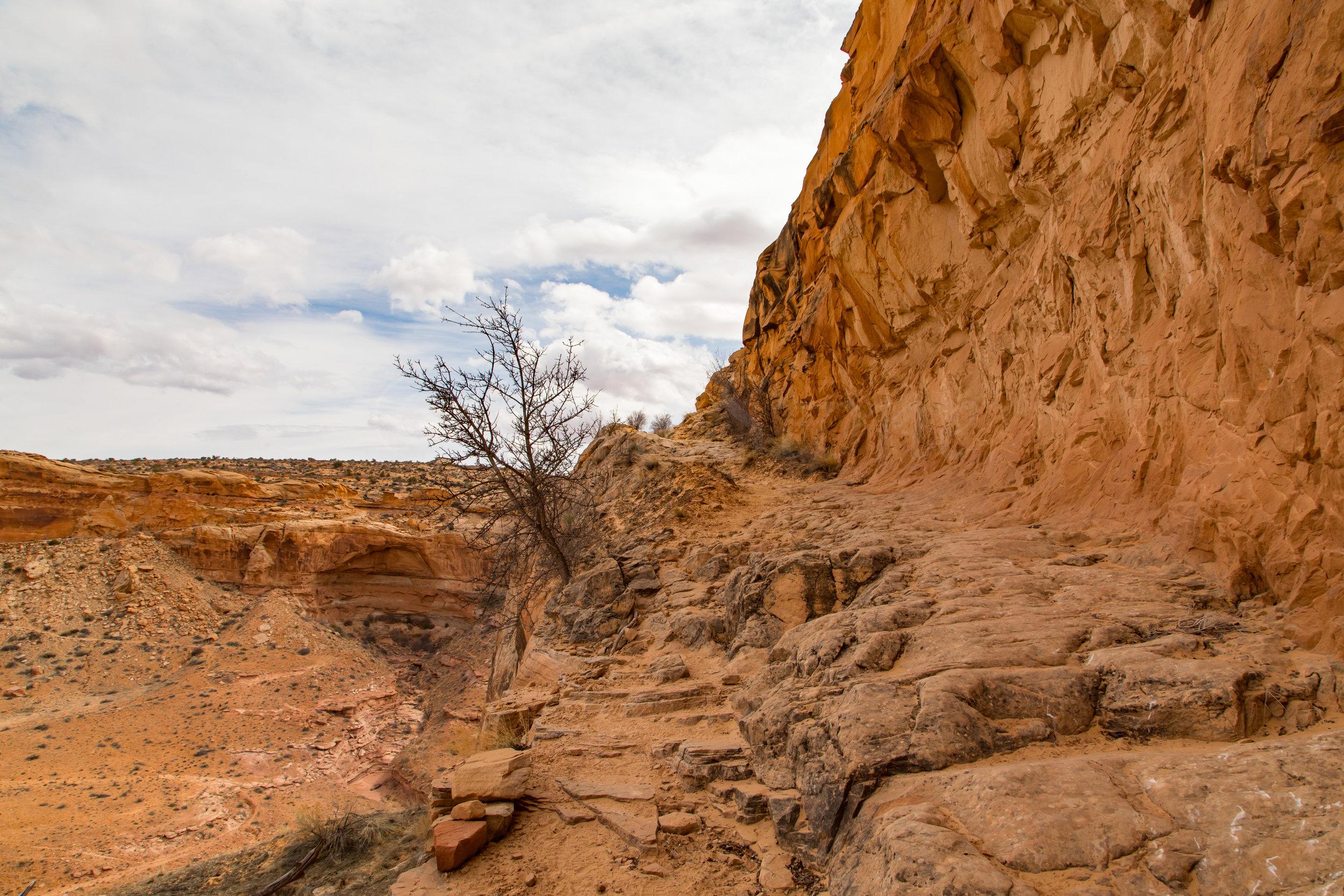Horseshoe Canyon, Image # 9248