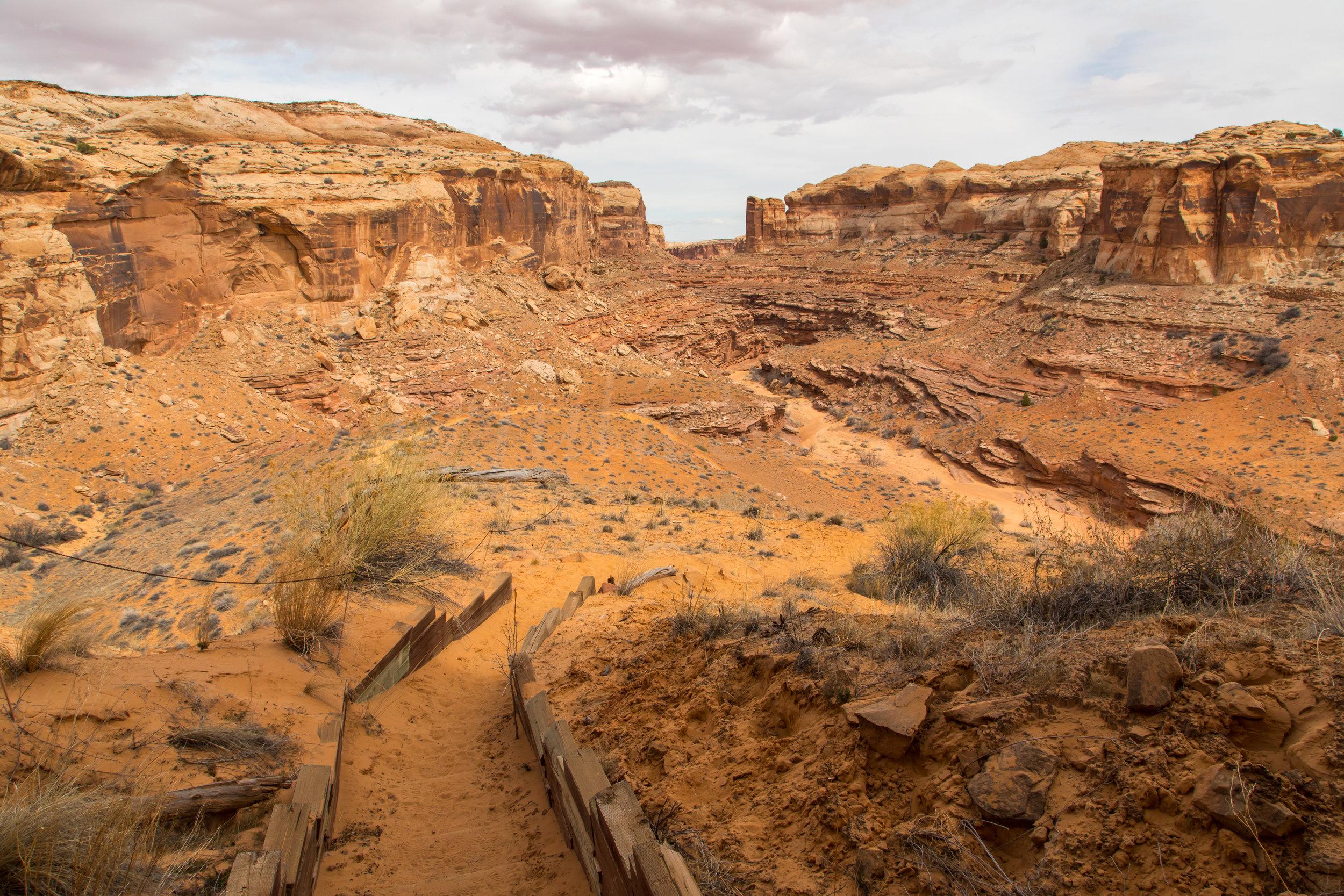 Horseshoe Canyon, Image # 9250