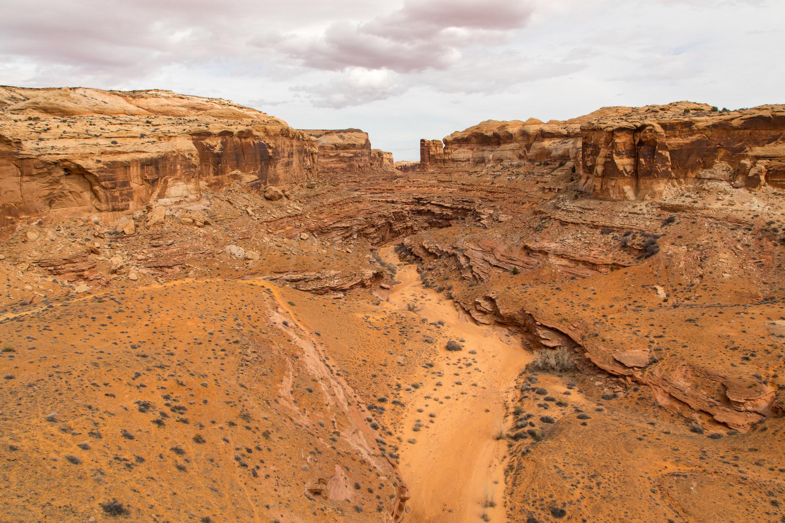 Horseshoe Canyon, Image # 9267