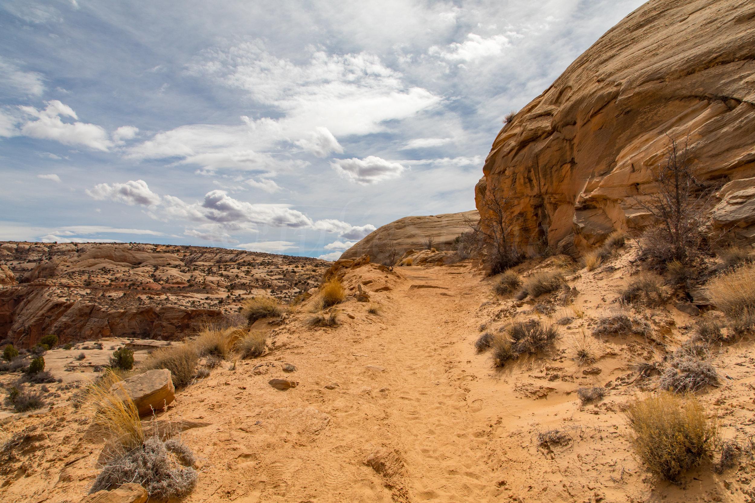 Horseshoe Canyon, Image # 9282