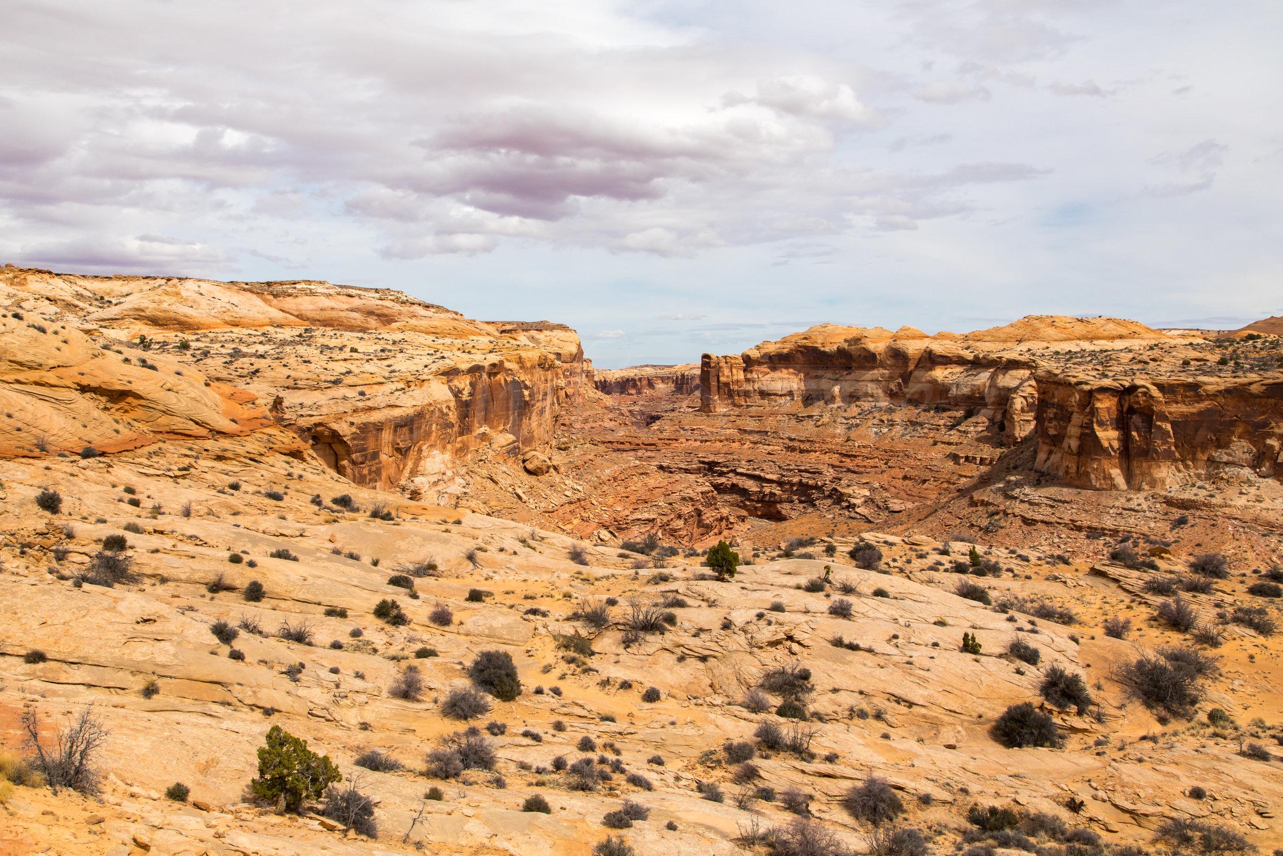 Horseshoe Canyon, Image # 9285