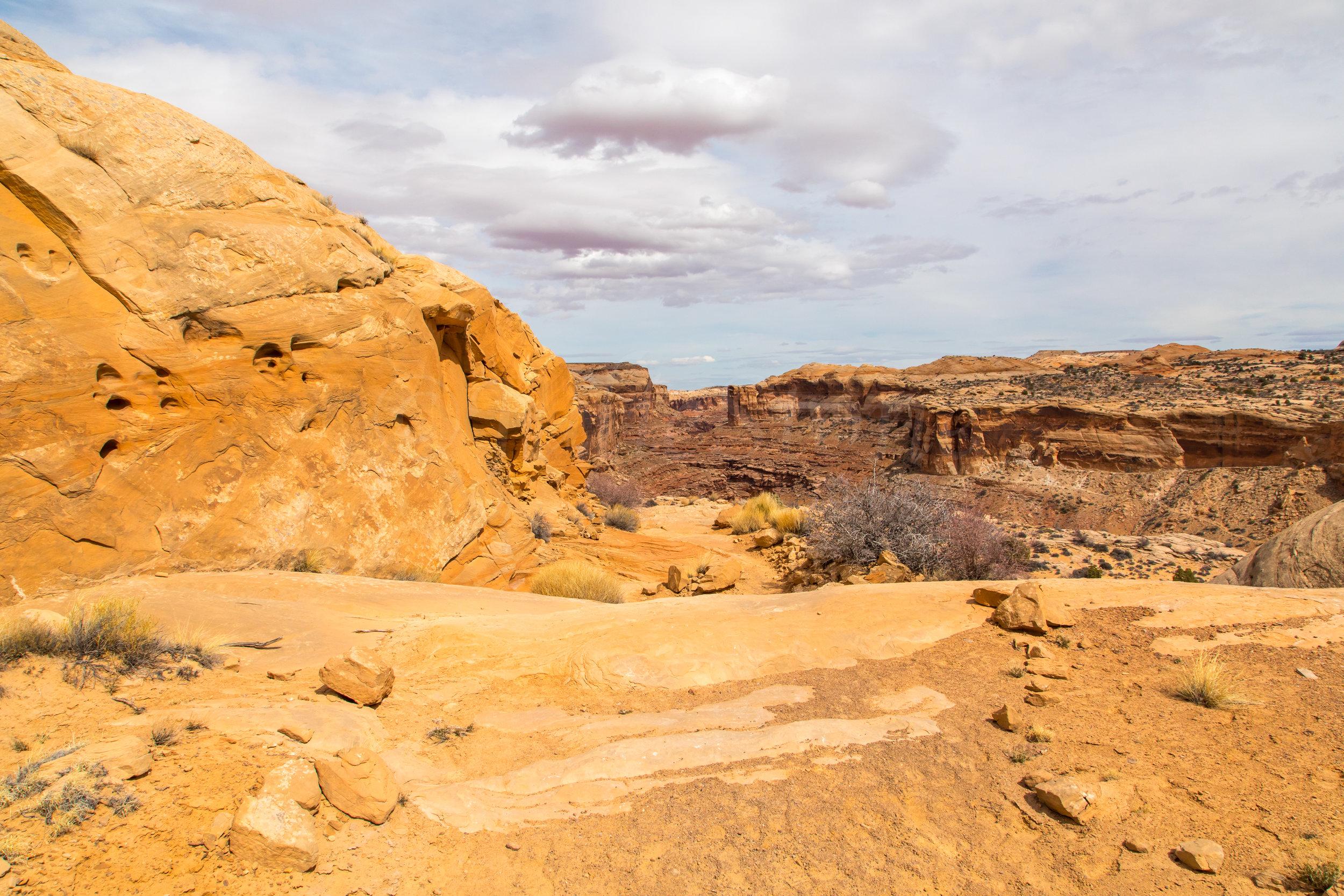 Horseshoe Canyon, Image # 9289
