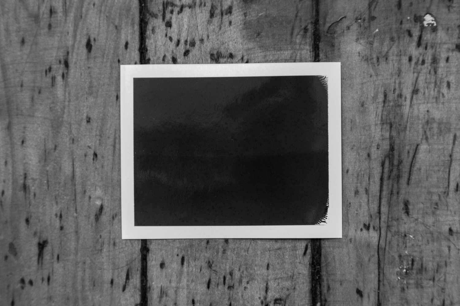 Error / Portraits is an unintentional collection of analog photo failures, a series of wrong portraits. Wrong exposition, bad developing, not centered scans, scratch and dust started to take shape of an unexpected story.  Taken along the years 2012-2018, the intent was to capture people in their everyday life. Eventually, they don't show anything of that.