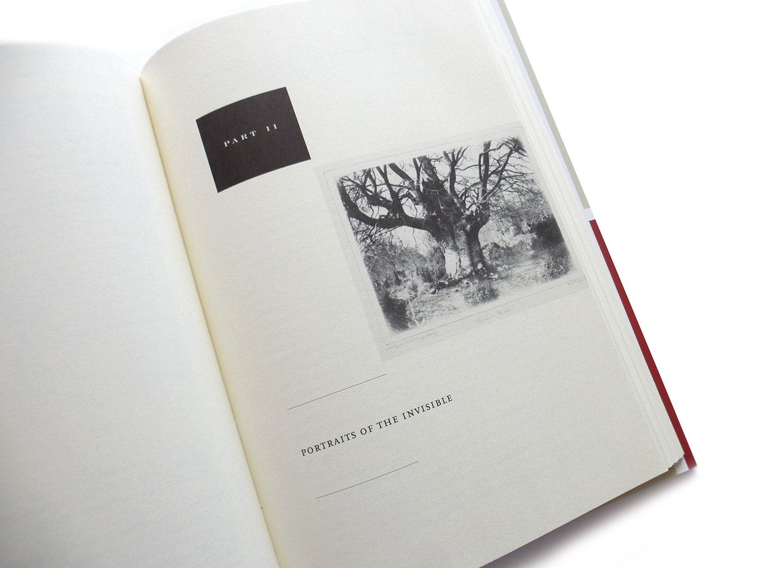 2013 AAUP Book, Jacket, & Journal Show: Interior Selection