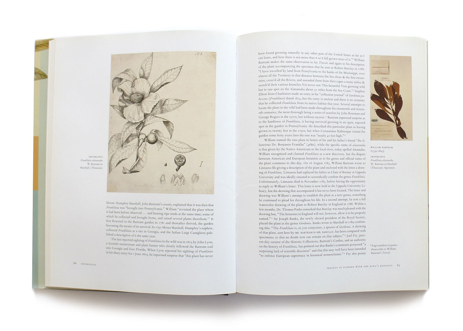 2008 AAUP Book, Jacket, & Journal Show: Interior Selection