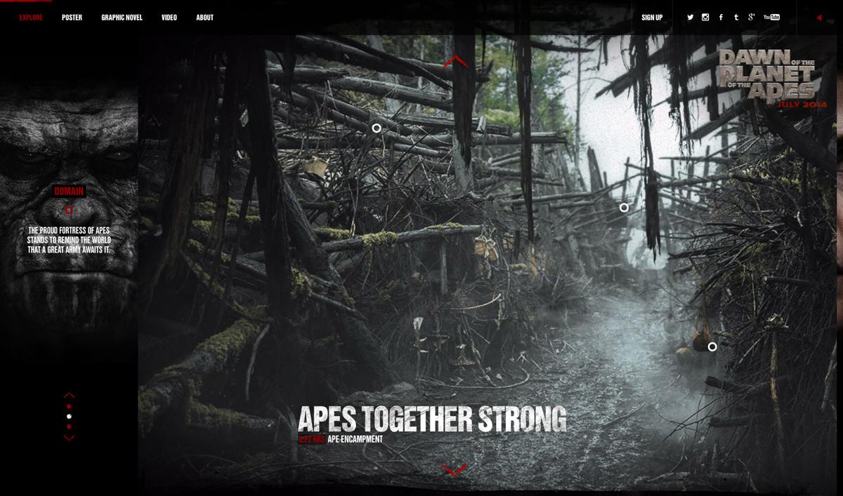 Ape Domain.