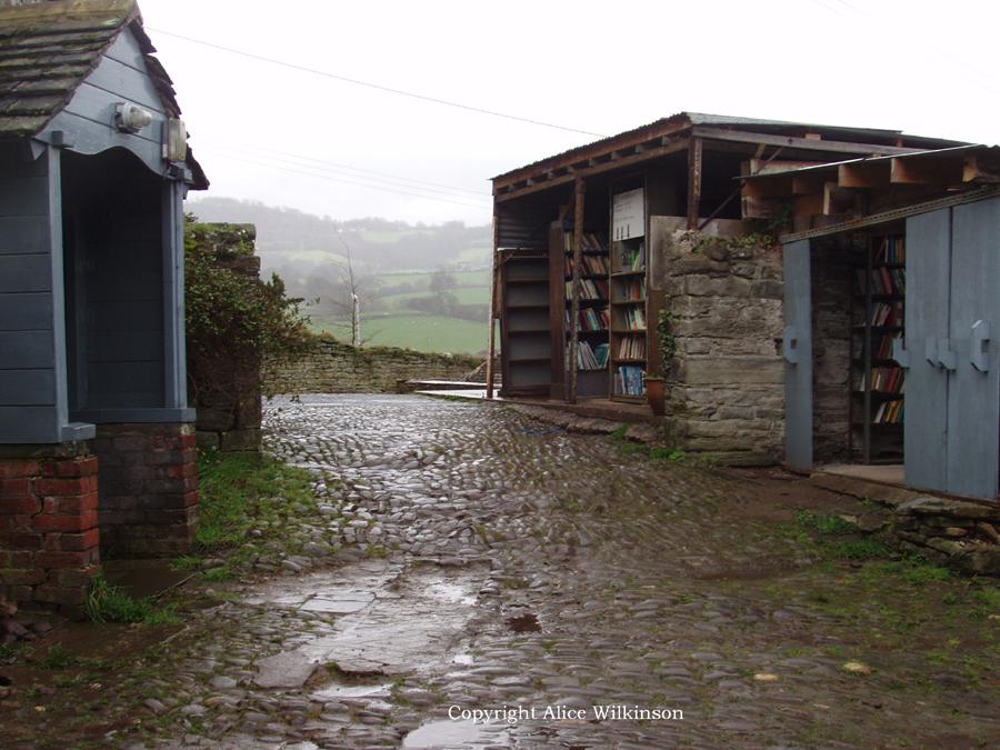 books in rain