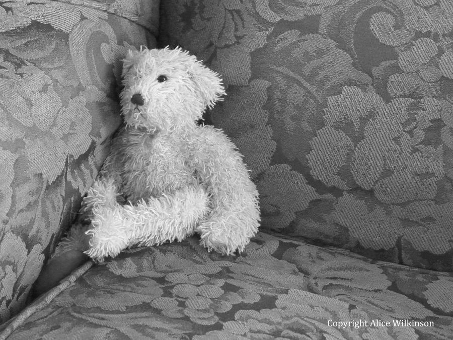 bear in a chair