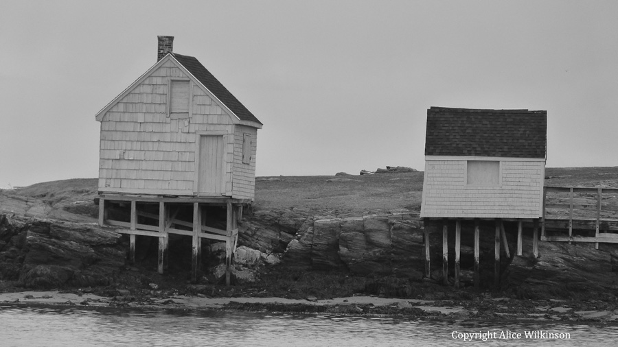 big fish house, small hut