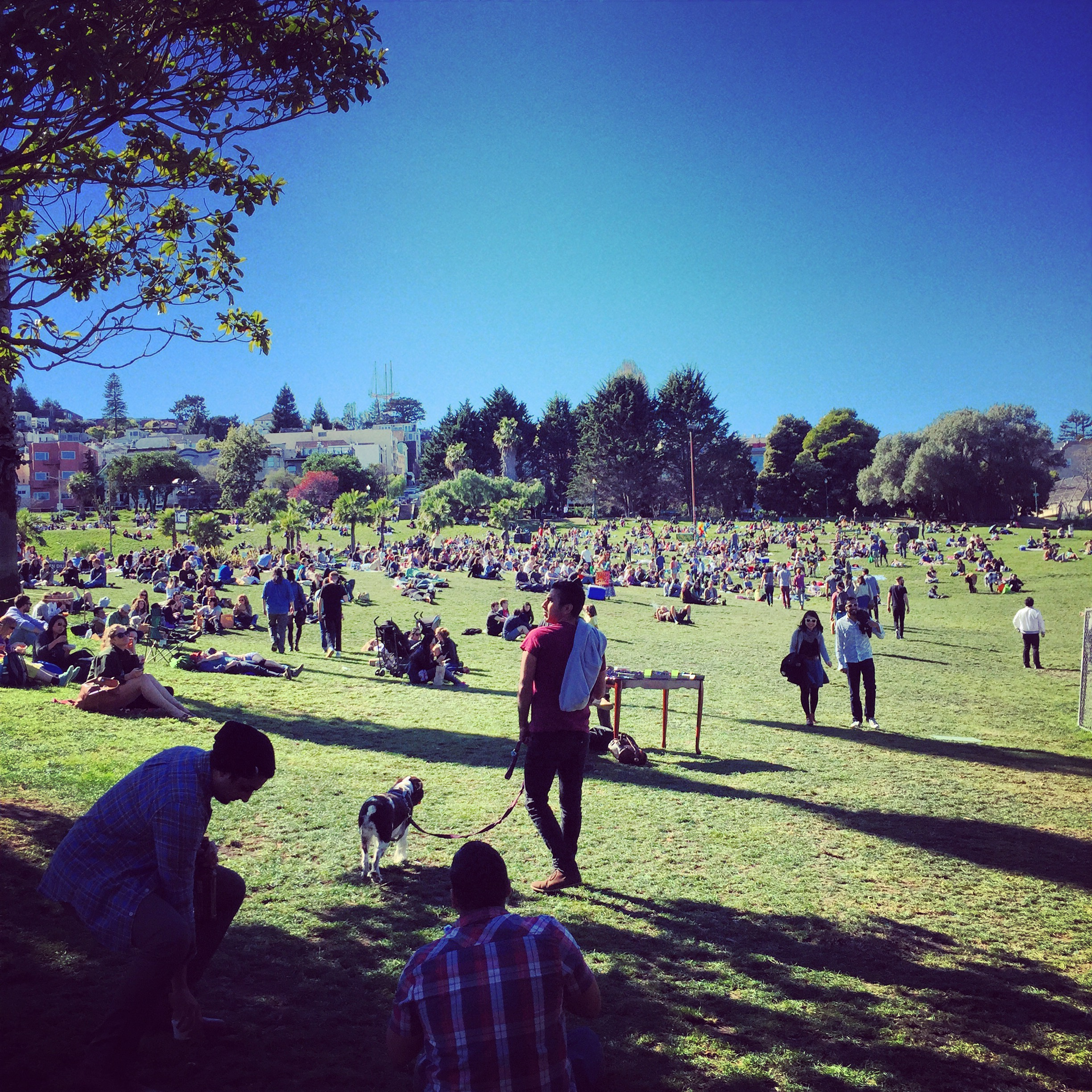 San Franciscans at play in Dolores Park.