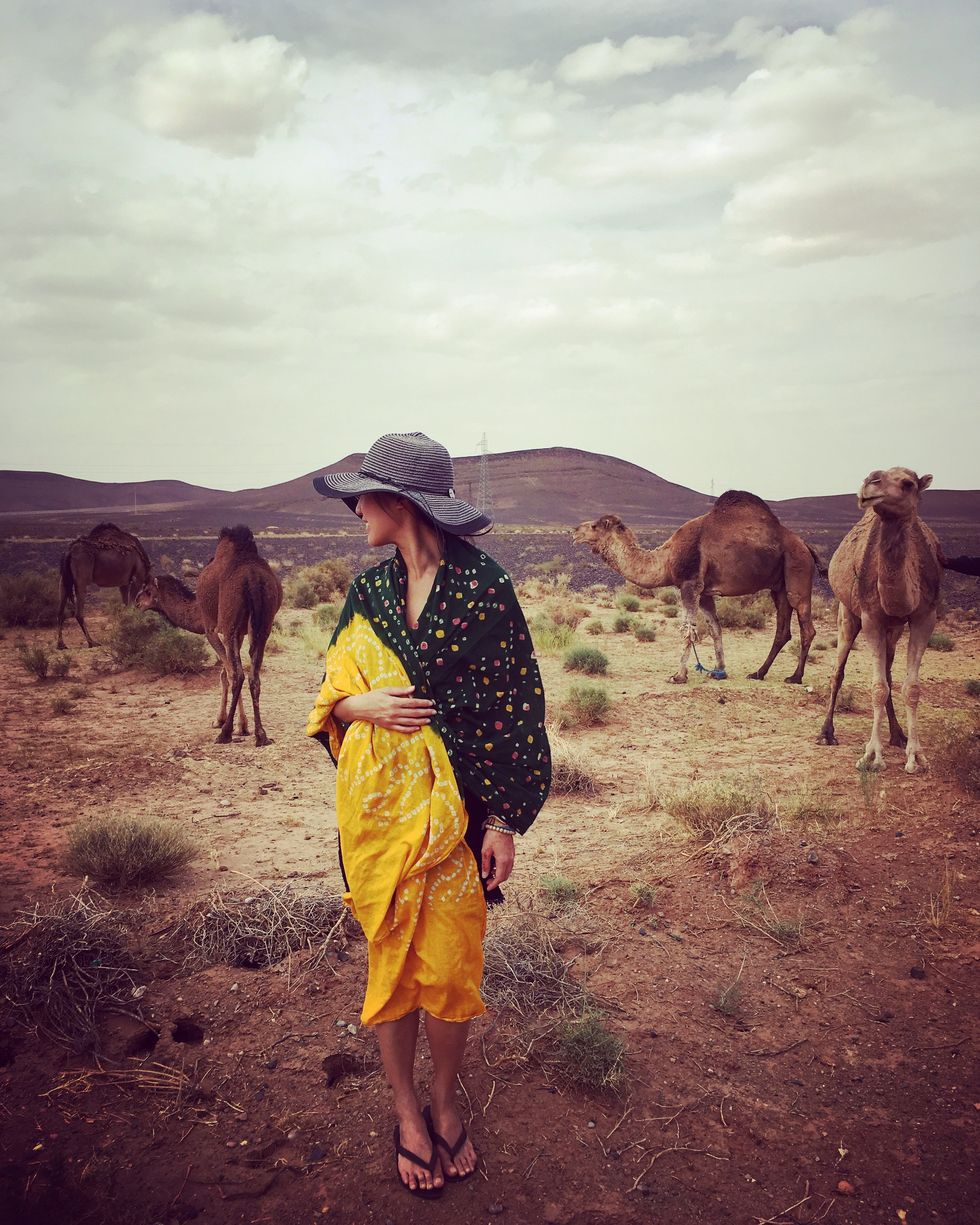 Strike a pose with roadside camels