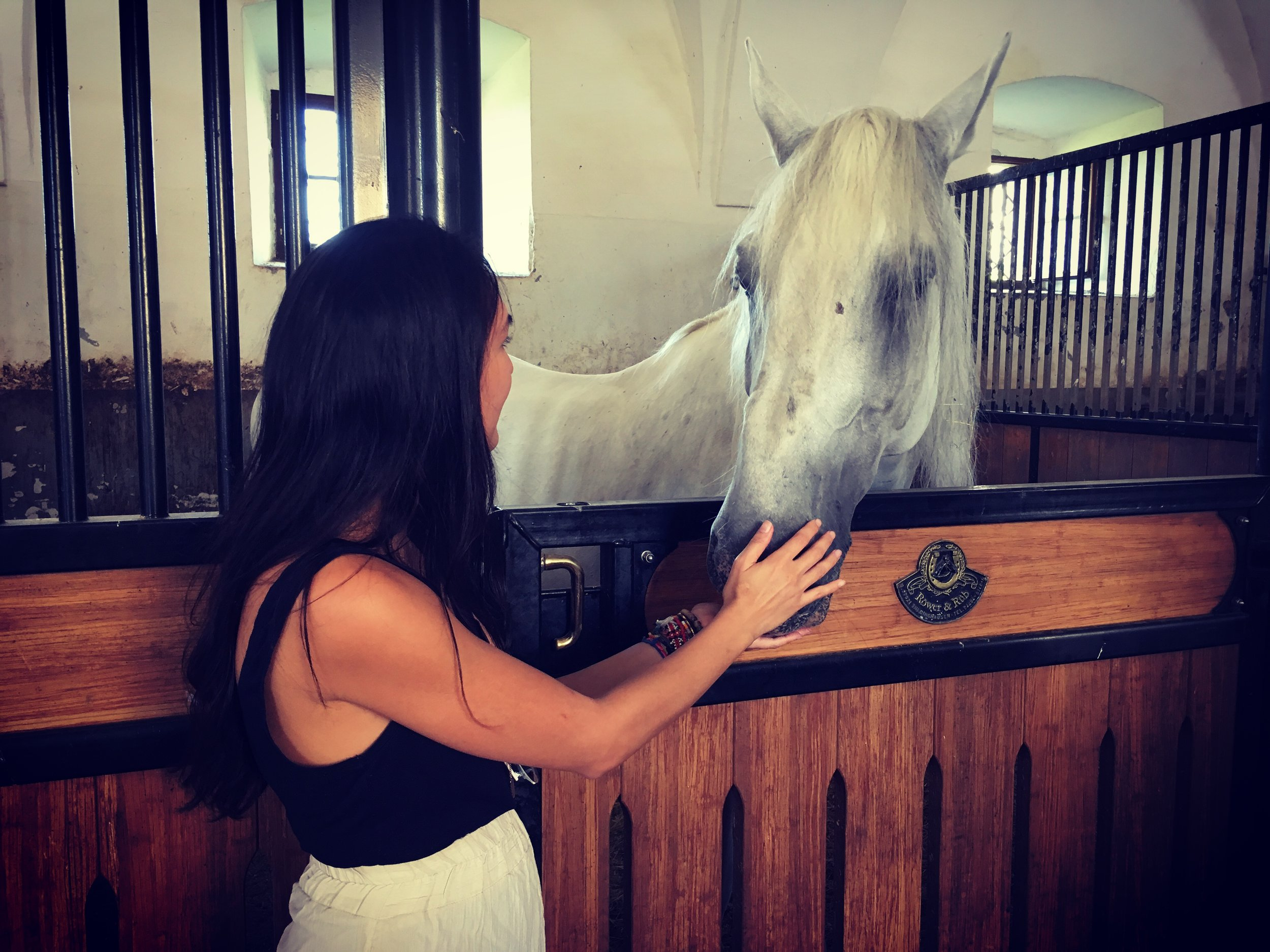 Bonding with this beauty named Pluto at Lipica Stud Farm, the oldest in the country, operating since 1580.