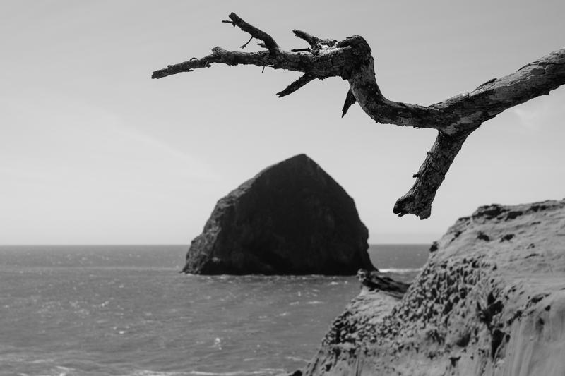 cape-kiwanda-oregon-beach-family-014.jpg