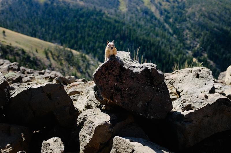 oregon-trail-trip-traveloregon-069.jpg