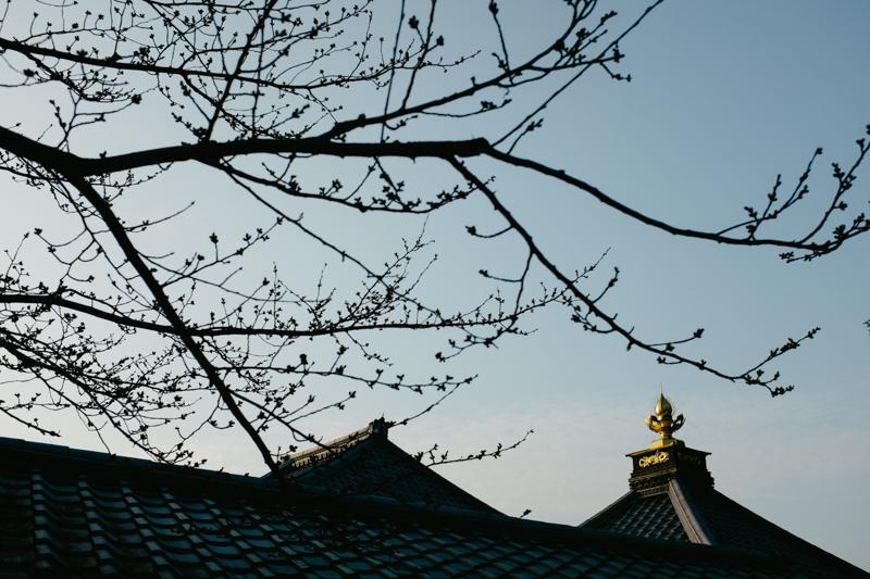 japan-travel-from-oregon-138.jpg