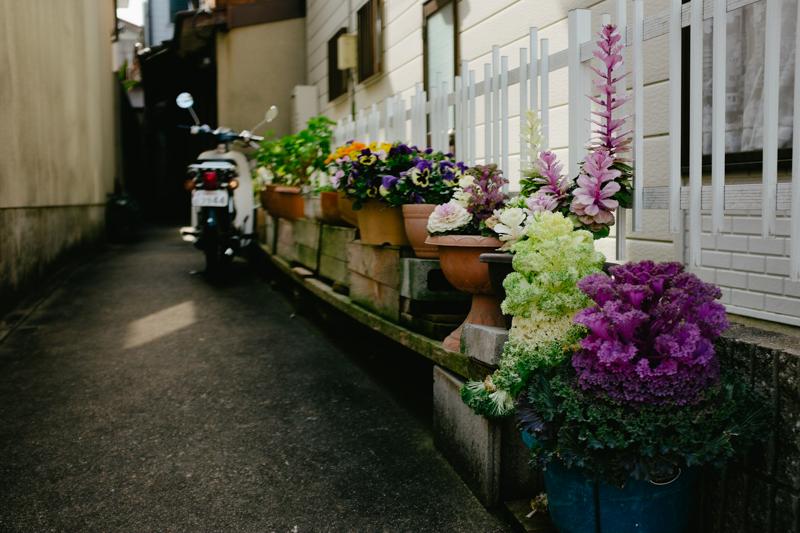japan-travel-from-oregon-153.jpg
