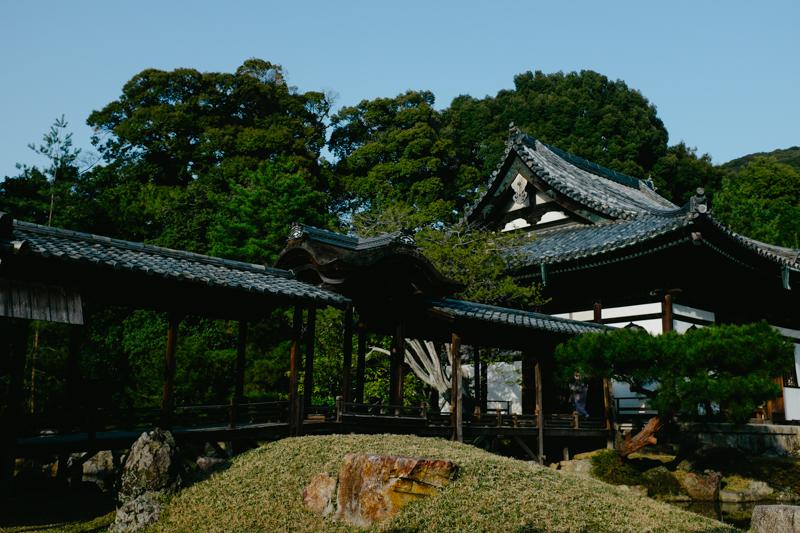 japan-travel-from-oregon-183.jpg