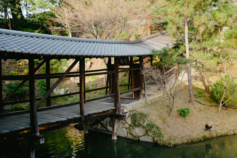 japan-travel-from-oregon-184.jpg