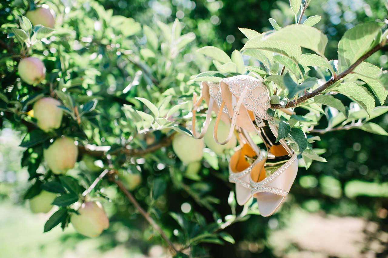 mt-view-orchards-hood-river-wedding-025.jpg