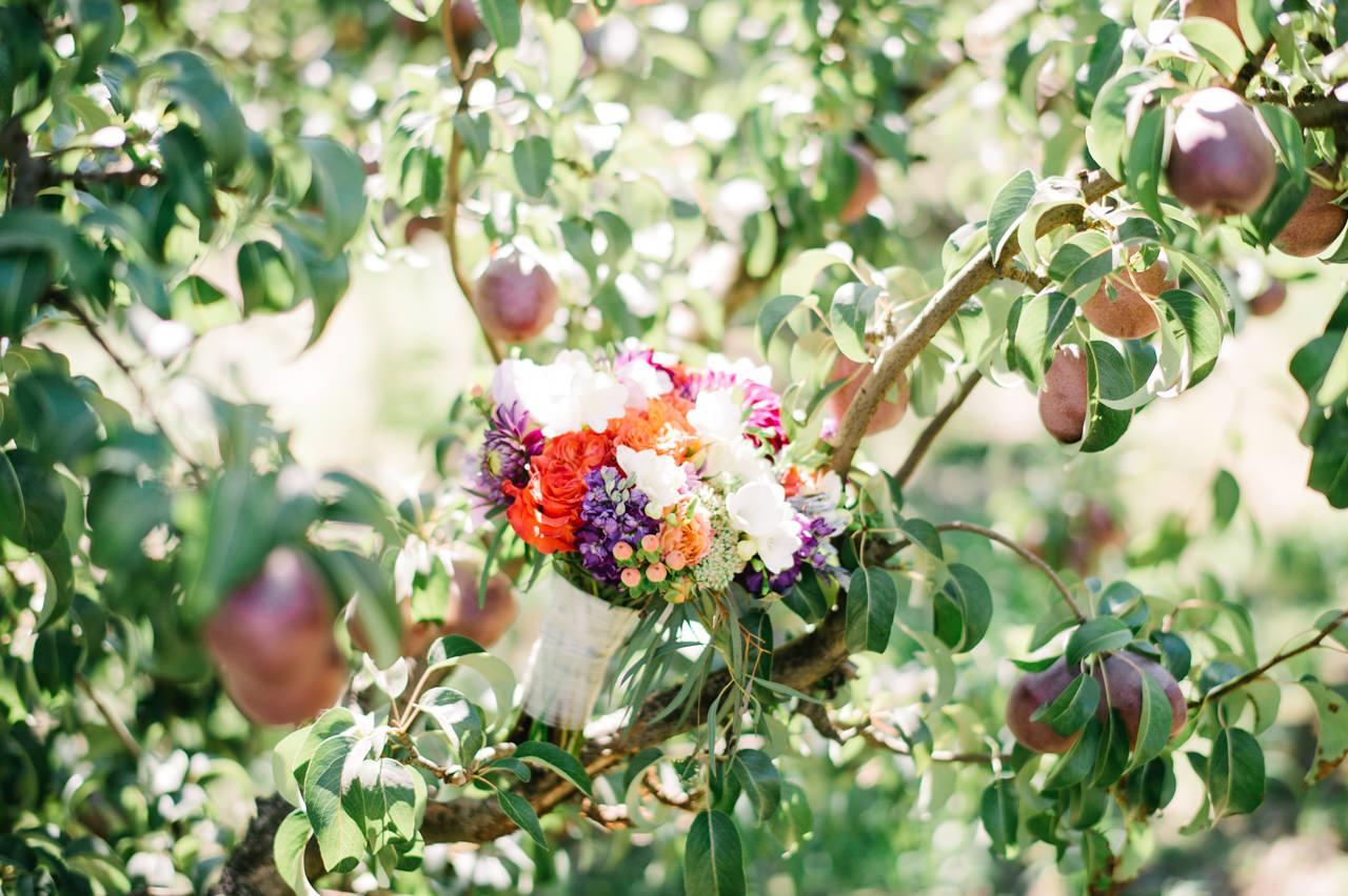 mt-view-orchards-hood-river-wedding-025b.jpg