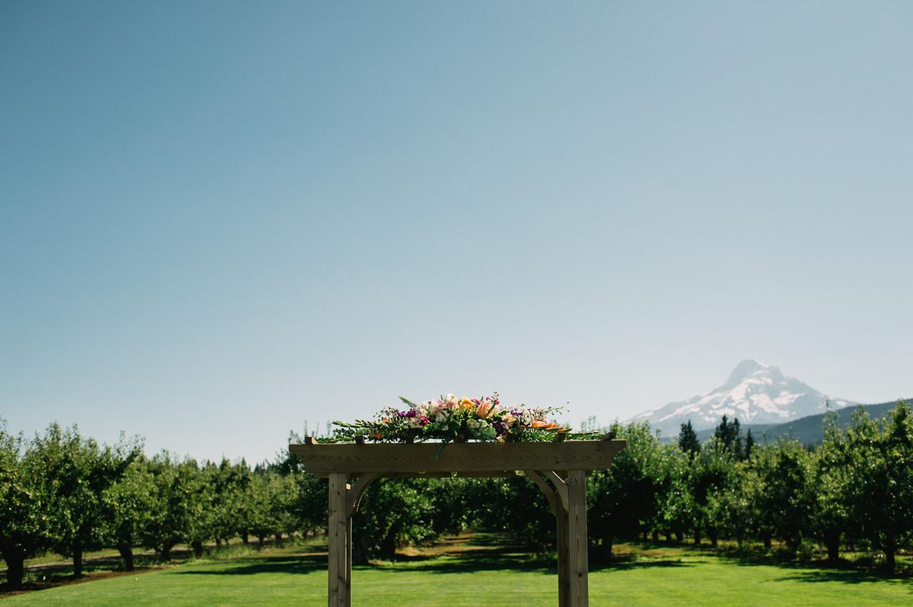 mt-view-orchards-hood-river-wedding-044.jpg