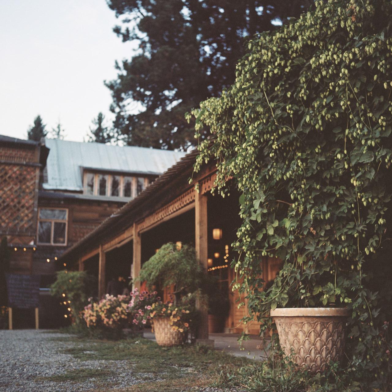 mt-hood-organic-farms-film-wedding-22.jpg