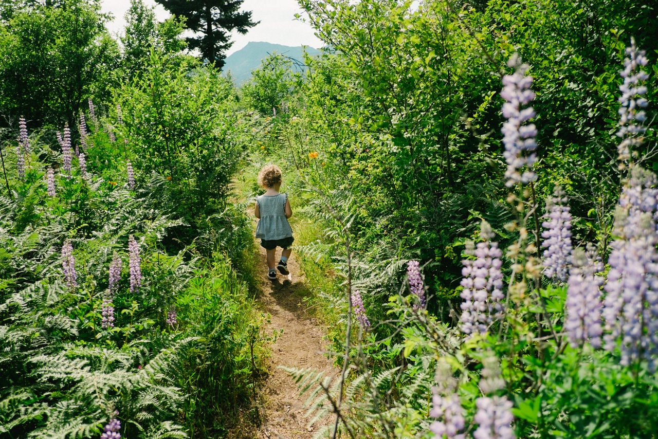 portland-family-summer-photos-023.jpg