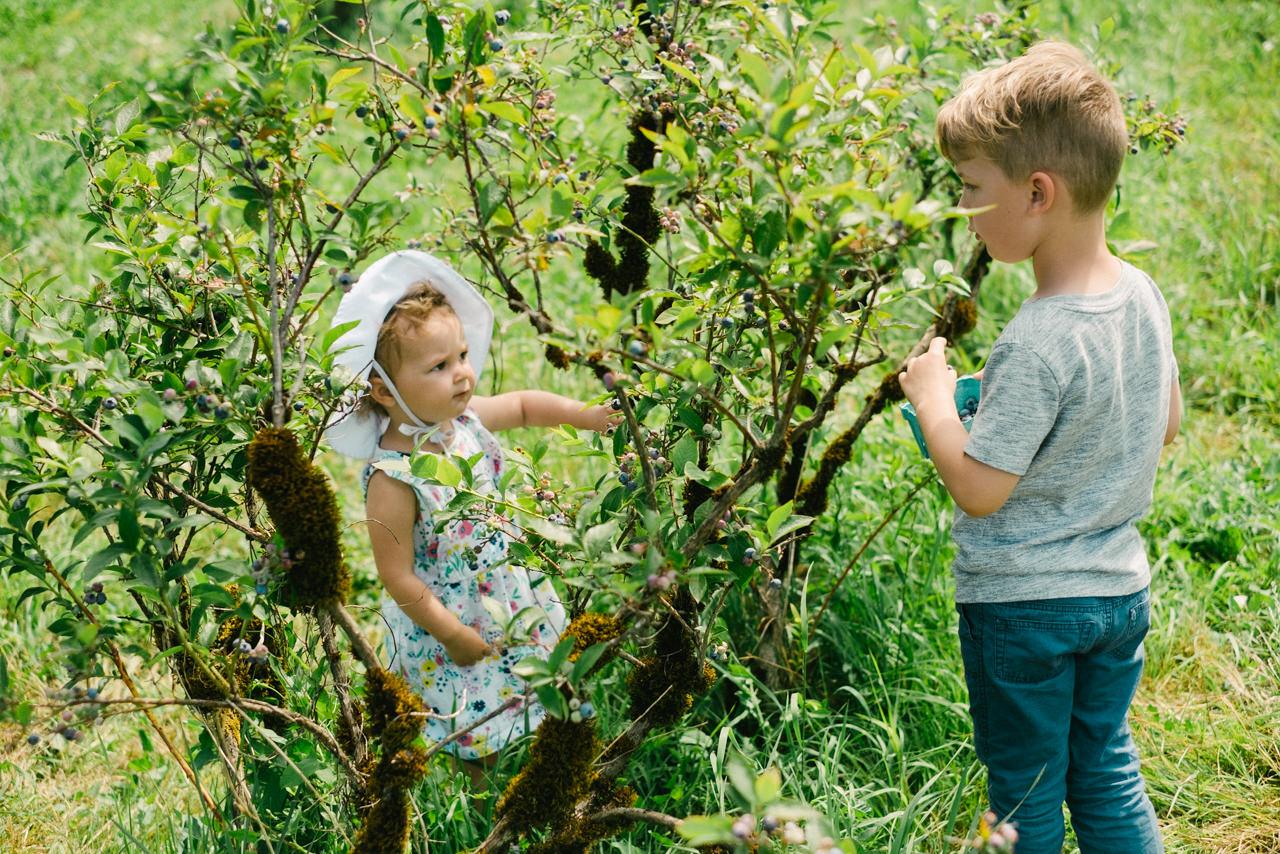 portland-family-summer-photos-119.jpg