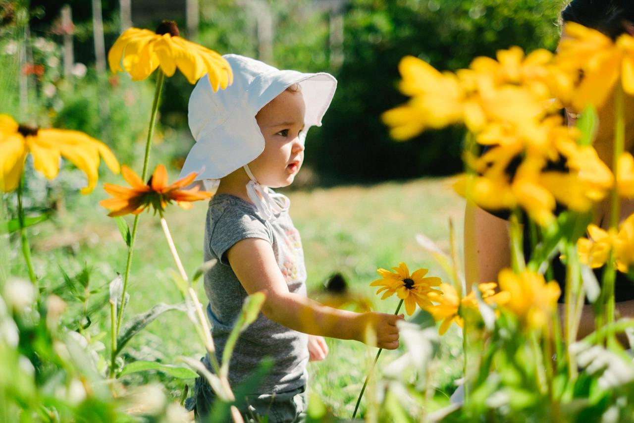 portland-family-summer-photos-241.jpg