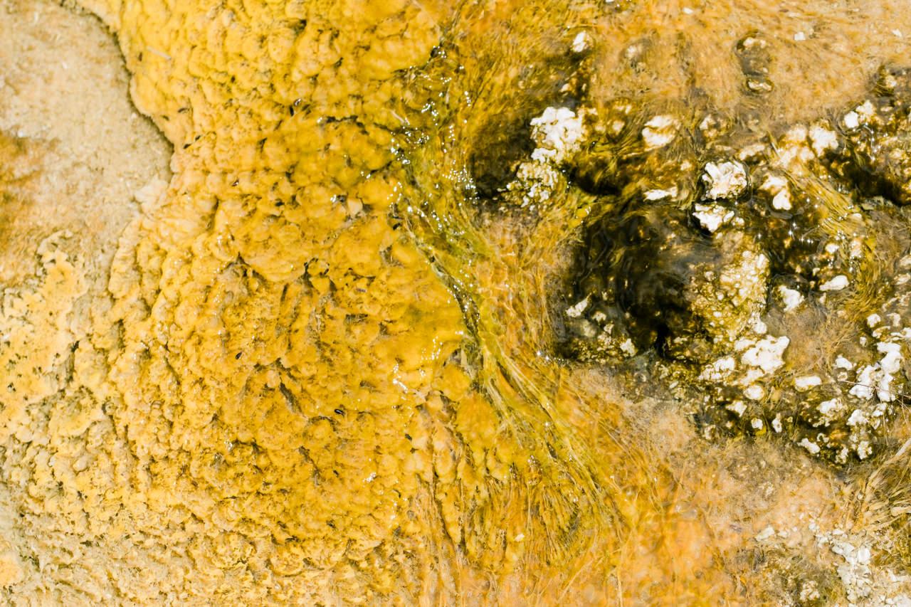 yellowstone-family-rv-roadtrip-048.jpg