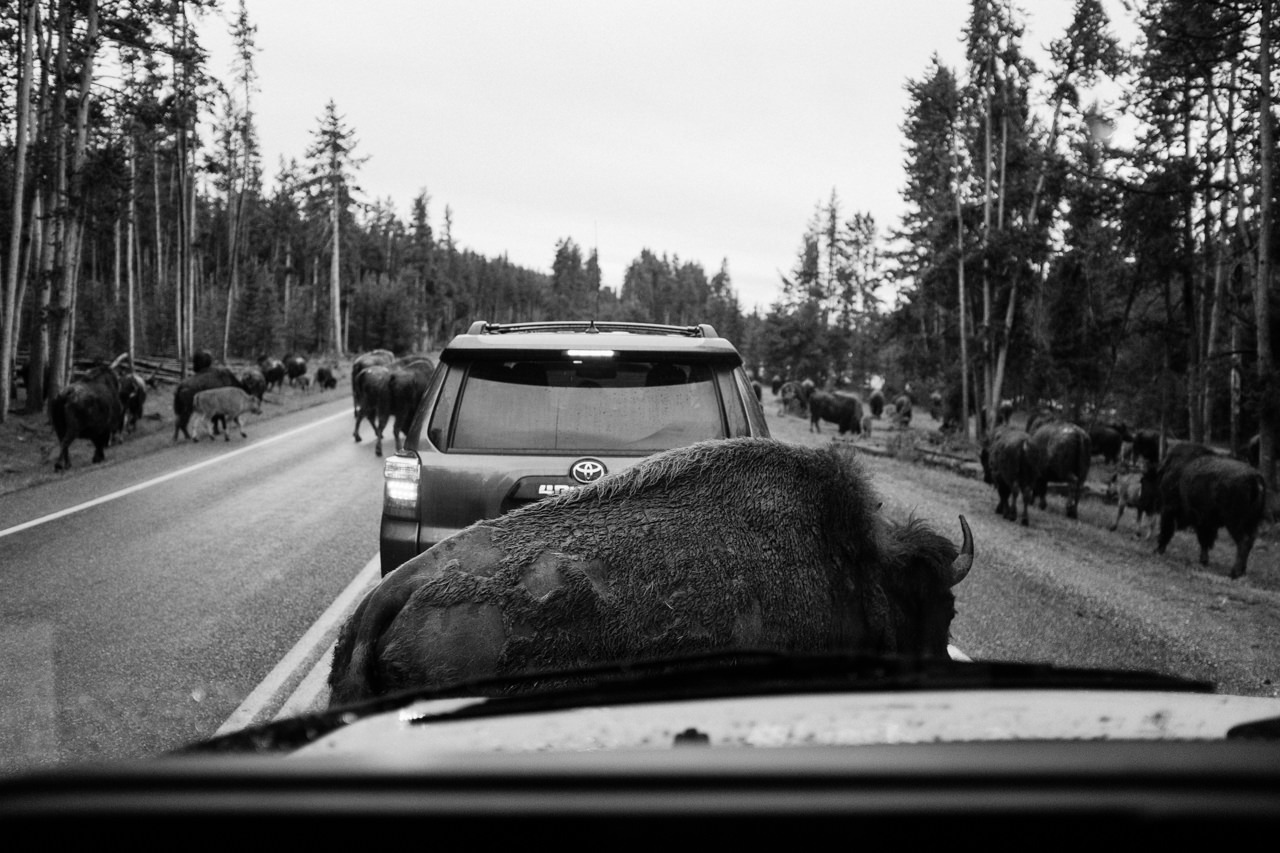 yellowstone-family-rv-roadtrip-076.jpg