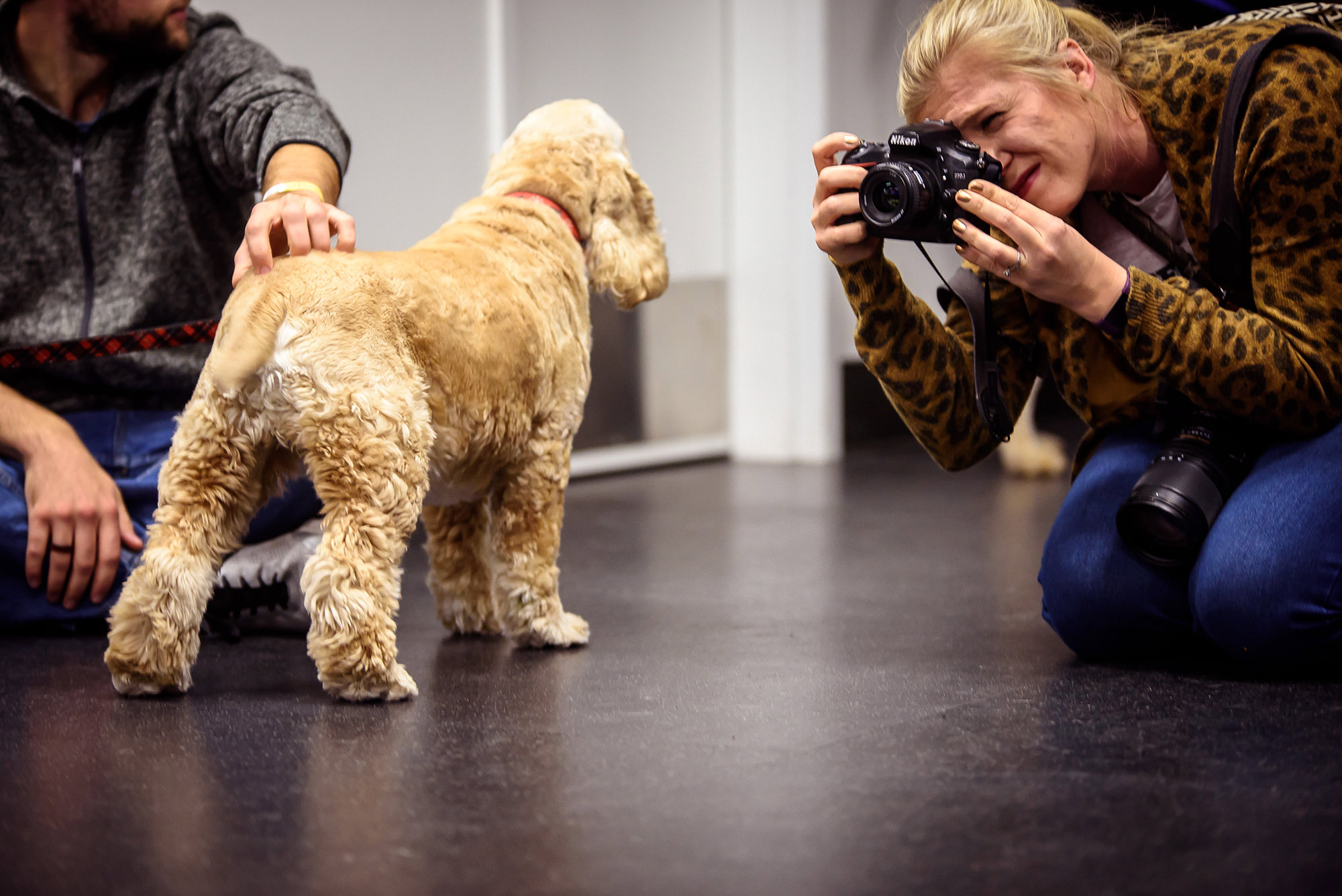 BEST OF OMAHA 2018 PUPPY PAGEANT.jpg