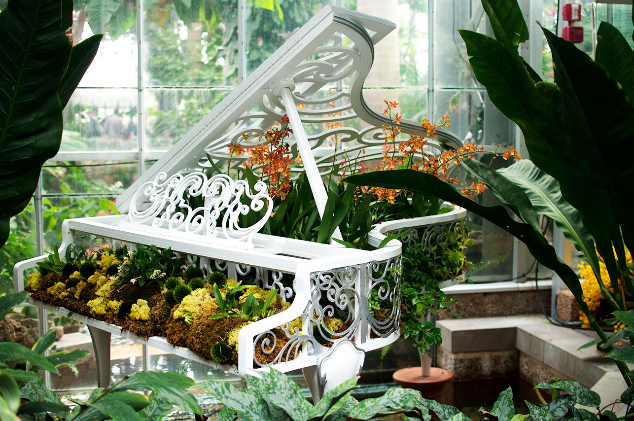 DC-Botanical-Garden-2.jpg