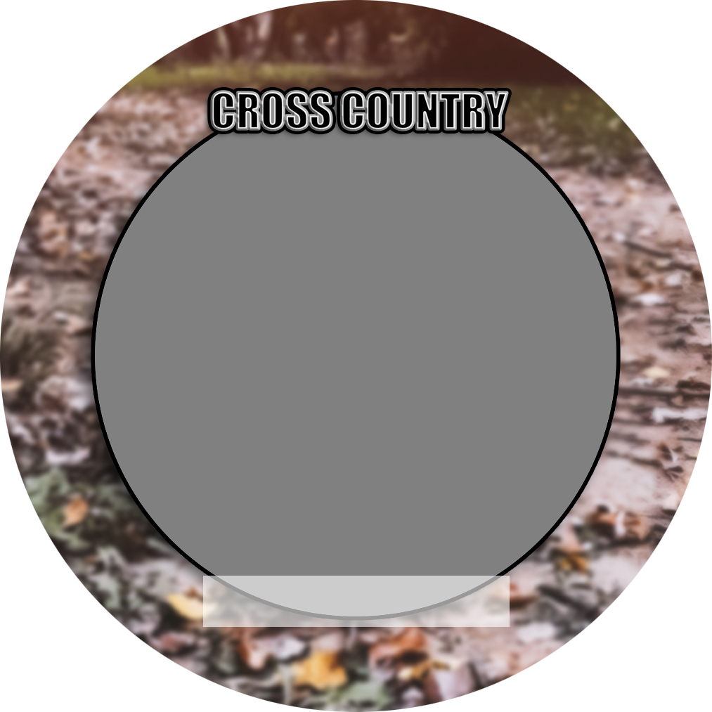 """Sports Baseball Specific Cross Country 3"""" Round Magnet and Button"""