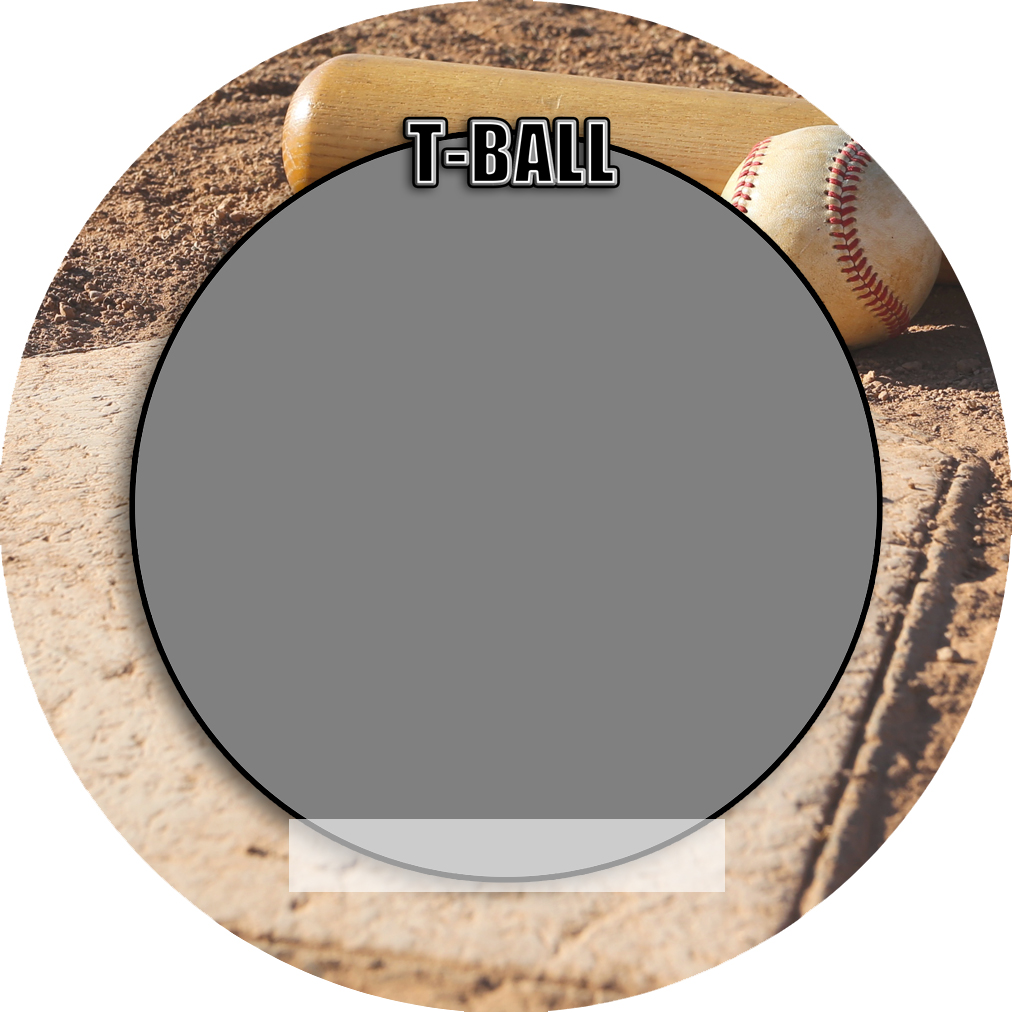 """Sports Baseball Specific Tball T-Ball 3"""" Round Magnet and Button"""