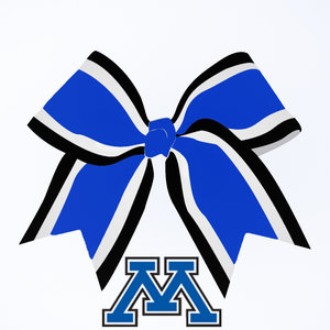 YourGuidetoCheerleadingGear_Cheerleading_Bow_DSG.jpg