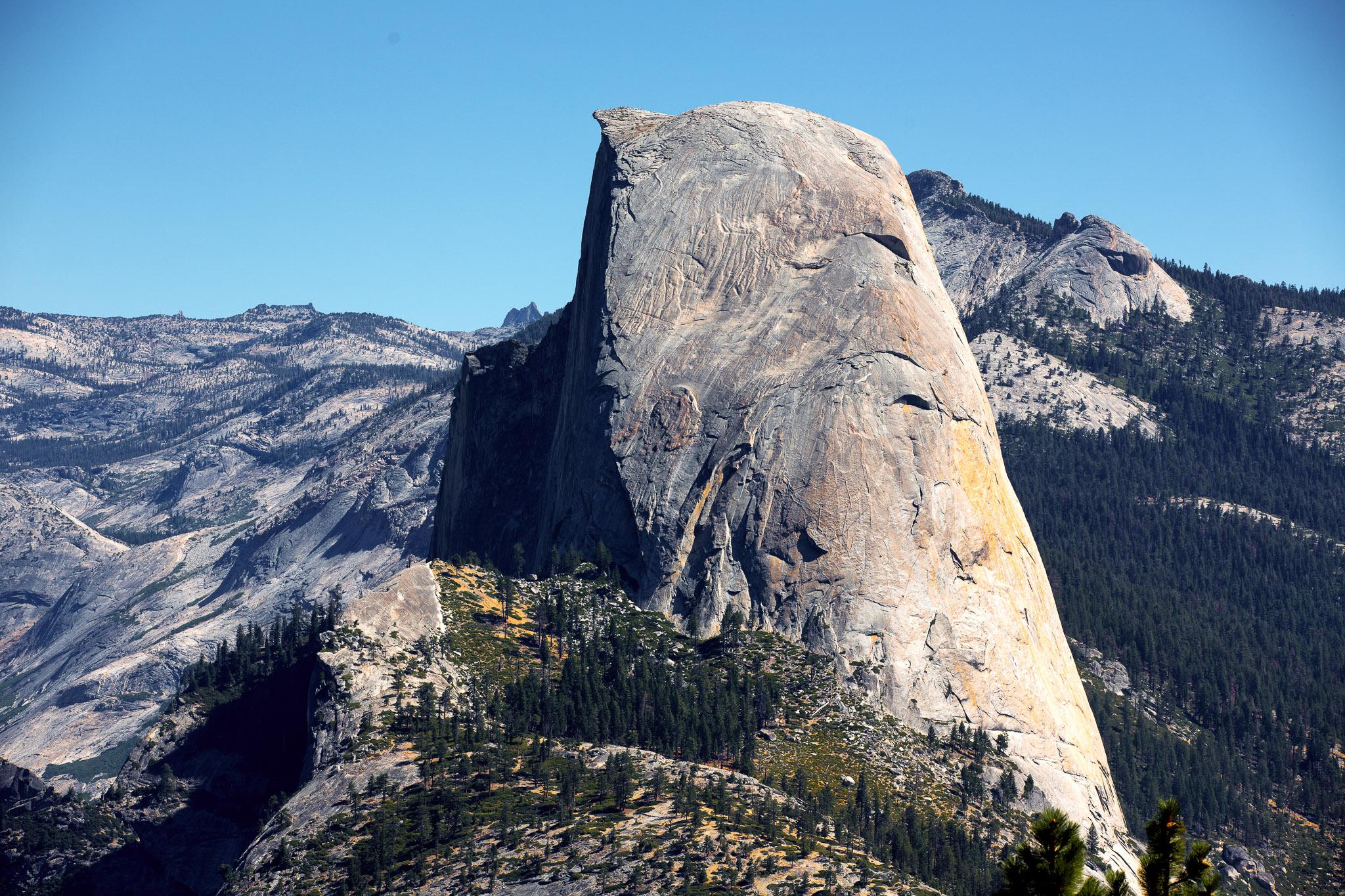 Yosemite-2015--4.jpg