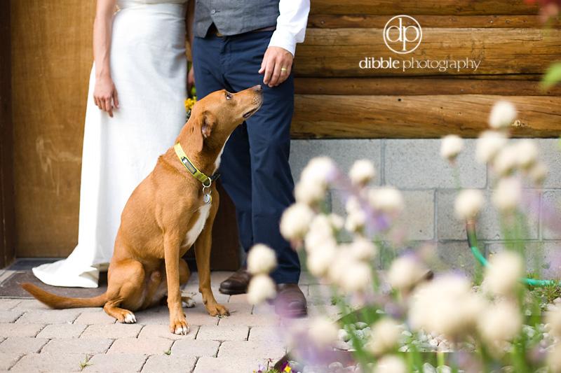 jackson-hole-wedding-ah33.jpg