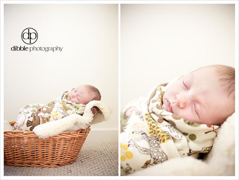 newborn-portrait-golden-bc12.jpg