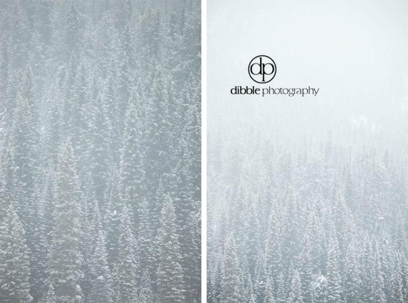 emerald-lake-winter-wedding-01.jpg