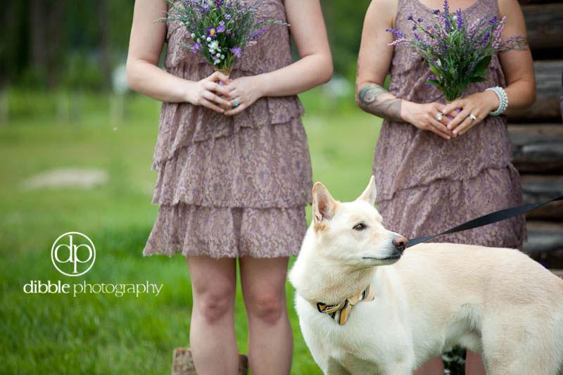 golden-bc-wedding-13.jpg