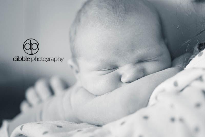 hallie-newborn-03