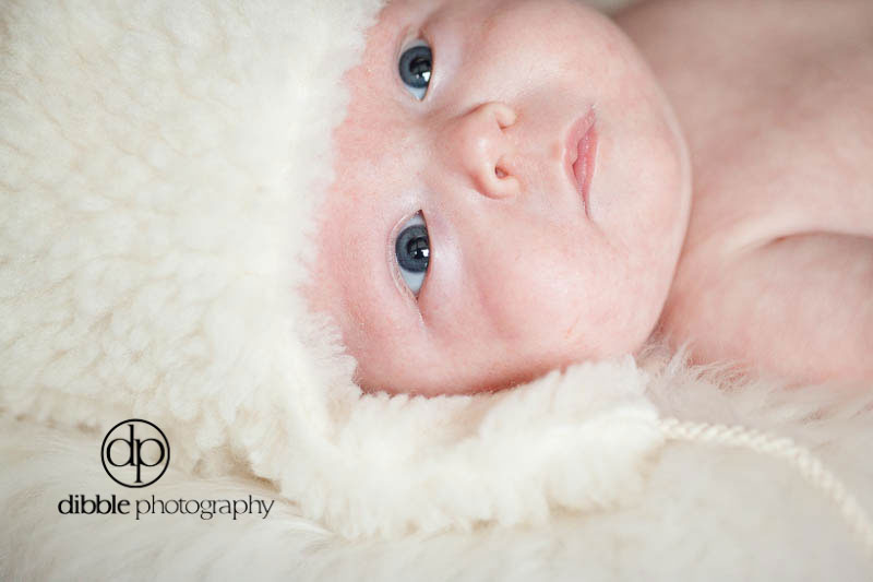 newborn-portraits-golden-o05