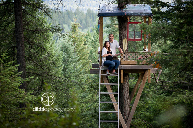 Treehouse in Golden BC