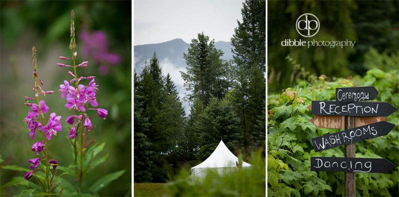 hillside-lodge-wedding-ja01.jpg