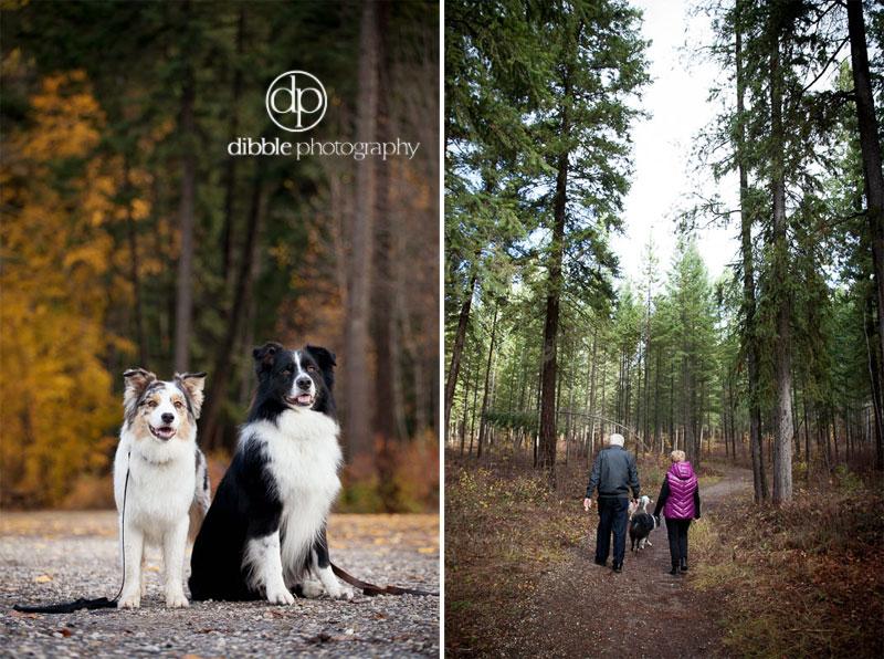family-dog-photos-DL06.jpg